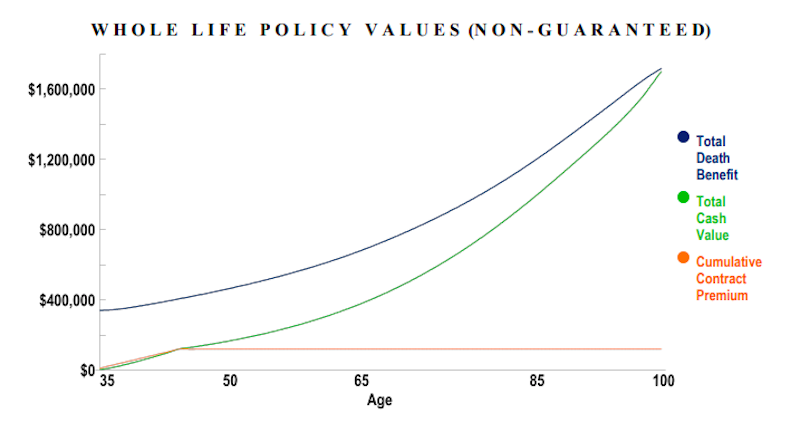 Whole Life Insurance Cash Value Growth Chart